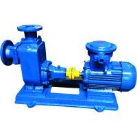 长申厂家直销CYZL-A系列直联式自吸离心油泵