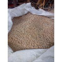 大量出售8mm纯松木生物质颗粒,锅炉燃料,燃烧机专用燃料,热值高,灰分低