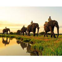 清迈自由行攻略——陕中旅_具有品牌的旅游公司