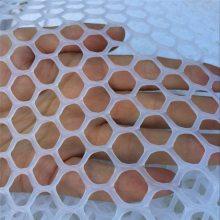 养殖塑料网 塑料平网 脚踩网