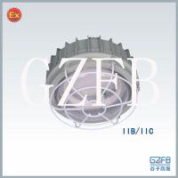 双管22W防爆环形荧光灯220V
