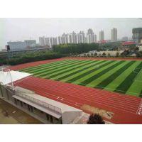 肇庆梅州运动草坪厂家直销 学校/部队足球场人造草坪建设