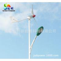 2014厂家直销200w-300w家用监控用风力发电机,风光互补发电系统