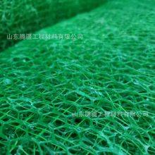 山东腾疆三维植被网厂家 公路铁路河道绿化固土防护网三维植草网