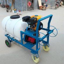 园林果树打药泵机 果园高压打药机 手推式汽油喷雾器