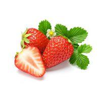 甜宝草莓苗直销_卢湾甜宝草莓苗_仁源农业科技