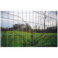 宜昌荷兰养殖网 畜牧围网 住宅小区围栏网