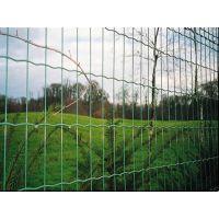 四川瑞才1.8米卷状绿色养殖护栏网一卷批发