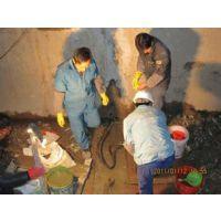 供应丽水地下室堵漏公司