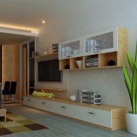 木门板式家具衣柜i橱图片