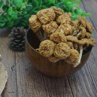 黄金菇散装批发 菌菇干货 稀有菌菇 皖太源野 500g