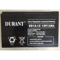 湖南艾德迅供应直流屏蓄电池 铅酸免维护蓄电池 杜兰特DURANT电池