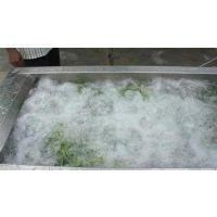 气泡清洗机厂家直销价、气泡清洗机、诸城顺泽机械