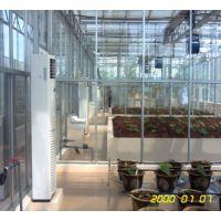 郑州玻璃温室大棚生态餐厅设计及建造