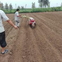 大功率小型中耕培土机 多功能大成家用型播种起垄机