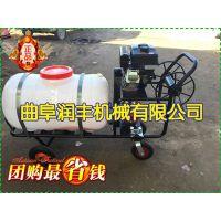 自走式大型喷雾器参数 农用杀虫汽油打药机喷雾器 润丰