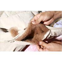 清河绒毛厂供应驼绒,驼毛,驼毛渣,弹性好,柔软度高,有长度,价格低廉,厂家直销