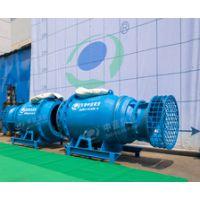 天津中蓝轴流泵水泵厂