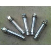 膨胀螺栓(M10*100)