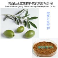 低价优质健康,抗氧化保健橄榄叶提取物