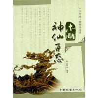 雕刻工具雕刻书 <神仙百态>书籍东阳 雕刻刀木雕