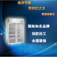 劲松(卡姆尼)双大门展示柜 陈列柜 冷藏展示柜 超市饭店商用