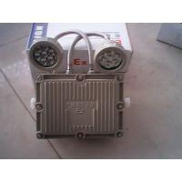 BAM52防爆路灯 BAM52-10A N250防爆路灯