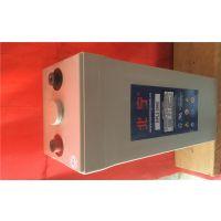 德国北宁蓄电池DFS300进口价格