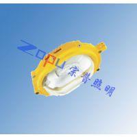 泰来TGF753-J70W应急防爆泛光灯