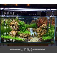 无锡鱼缸清洗换水观赏鱼出售