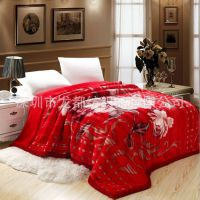 供应毛毯厂家拉舍尔毯子 冬季礼品加厚双层盖毯 5公斤超柔厚毛毯批发