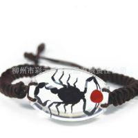 生产批发 透明 红豆蝎子 昆虫琥珀手链 树脂特色饰品 韩国饰品