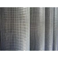 电焊网|不锈钢电焊网|水貂笼电焊网|安平文双电焊网