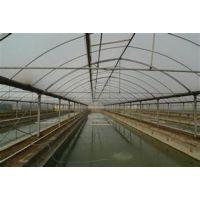 优质温室大棚(图)、温室大棚设计、温室大棚