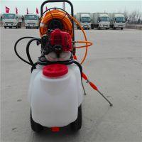 大成牌推车式打药机 农用汽油高压喷雾器