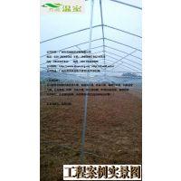 供应湛江蔬菜大棚FC-018、蔬菜大棚厂家、芳诚温室--18988967562