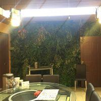 梦幻城堡仿真藤条绿萝叶装饰室内客厅墙壁葡萄藤假树叶绿藤藤蔓植物空调管