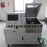 非标设计汽车精滤器爆破试验设备,精滤器水压/爆破试验台参数