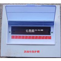 正典联合电器】全不锈钢PZ30系列 PZ30-12照明配电箱 明装 暗装
