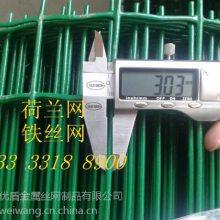 安平围栏网专用立柱 30米一卷养鸡铁丝网 焊接浸塑围护网正品销售