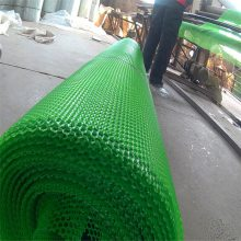 塑料养殖平网 塑料平网养殖网 果园围网