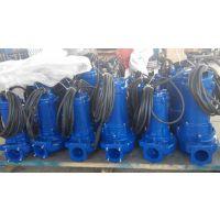 18913030135南京生产厂家迪蓝仕WQR25-14-2.2KW排污泵