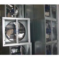 山东养殖场粪沟风机,猪场氨气排气扇,猪舍排氨气风机