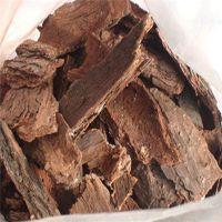 现货供应优质松树皮提取物原花青素95%