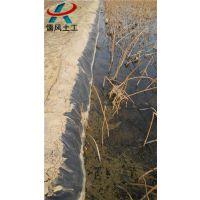儒风土工(图)_养鱼土工膜_贵阳土工膜