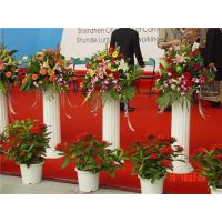 富兰迪庆典(图)|广州分公司周年庆策划|周年庆策划
