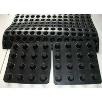 供应惠州质量可靠排水板 仁昊实业