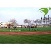 天津足球草坪场地施工_室内人造足球草