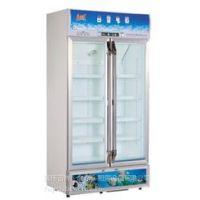 供应白雪SC-600F展示冷柜 白雪冰柜 双门冷藏柜 饮料展示柜 酒水展示柜 白雪冷柜