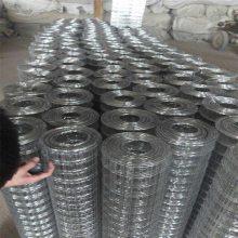 电焊网2分之一 热镀锌电焊网 抹墙铁丝网加工定做